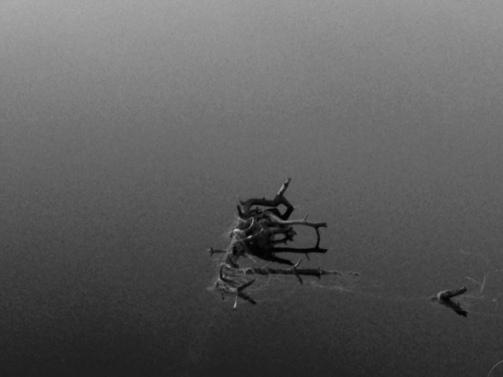Hailuodon järvellä